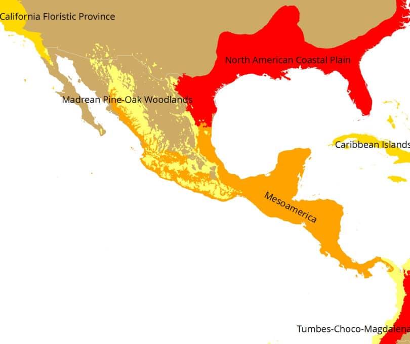 Biodiversitäts-Hotspots in Mexiko