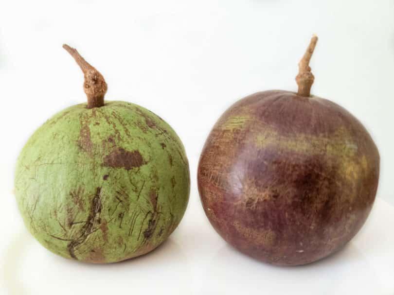Caitito - Wilde Früchte aus Tabasco