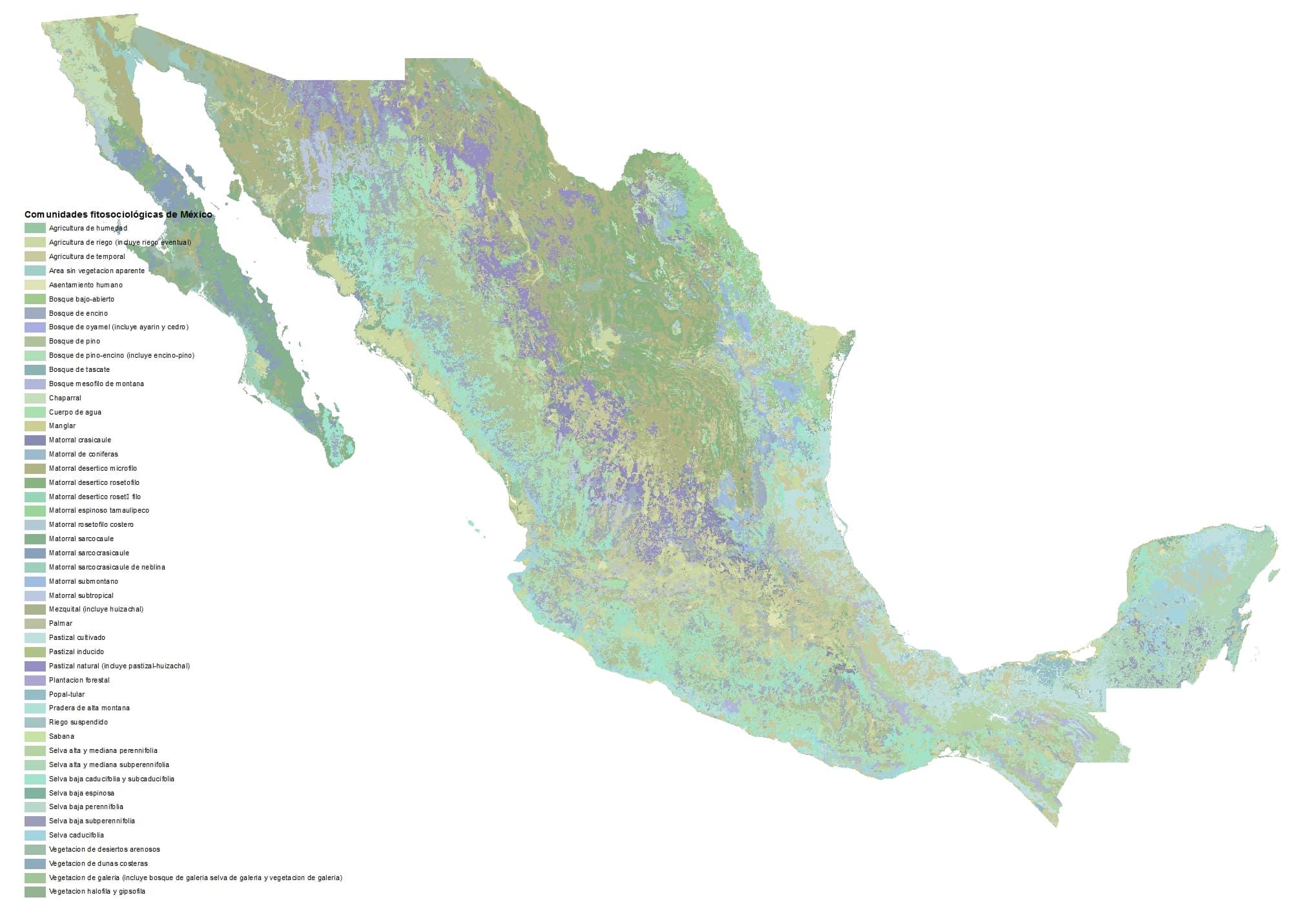Comunidades-fitosociologicas-Mexico