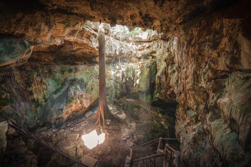 Cenotes in Homún