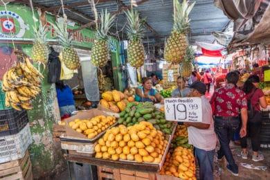 Der Markt von Mérida