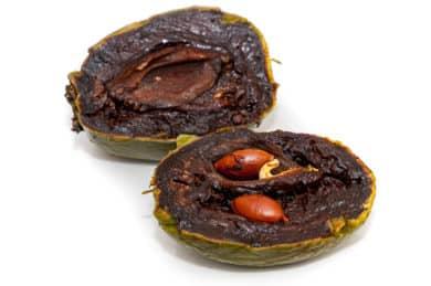 Zapote negro - Traditionelle mexikanische Frucht und Heilpflanze